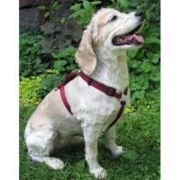 Harnais ajustable - 1'' pour chien