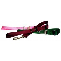 Adjustable car strap with 1'' handle