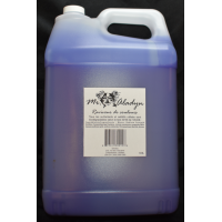 Colour Reviver Shampoo - 9.8 L - Mr. Aladyn