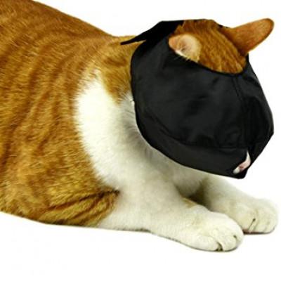 Muselières pour chats