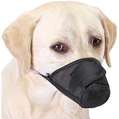 Muselières pour chiens