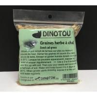 Graines à faire pousser de l'herbe digestive pour chat