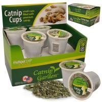 Tasses à l'herbe à chat - 4 gr / tasse - boîte de 12